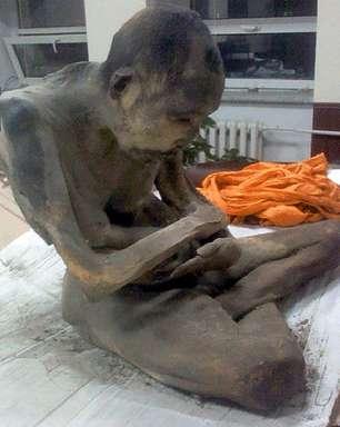 Budista: múmia não está morta, mas em 'meditação profunda'