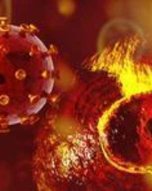 Cientistas criam nova vacina que protege macacos da Aids
