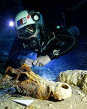 Fósseis de lêmures gigantes são achados embaixo d'água