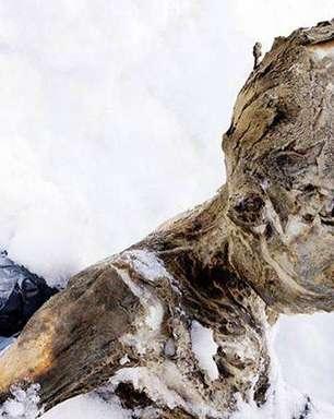 Corpos mumificados são encontrados em vulcão no México