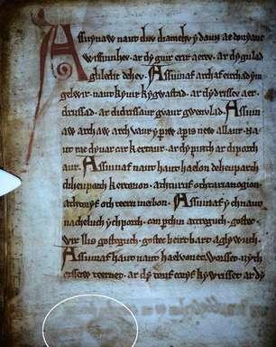 Desenhos medievais misteriosos são achados em manuscrito