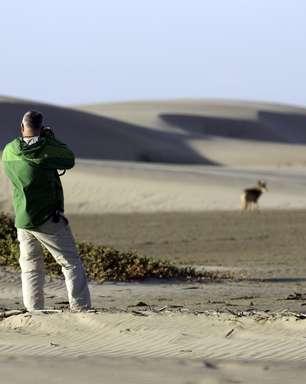 Lawrence Wahba será atração em cruzeiro na Baja Califórnia