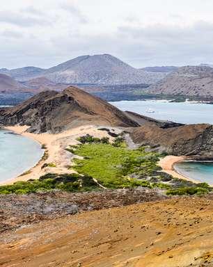 Paraíso natural, Galápagos é destino de expedição