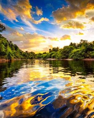 Mar do Caribe invadiu Amazônia duas vezes há milhões de anos