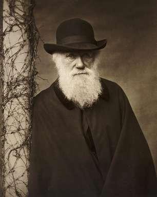 Darwin, da engenharia social à genética