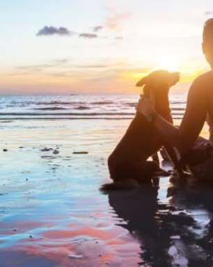 6 Motivos para ter um cachorro