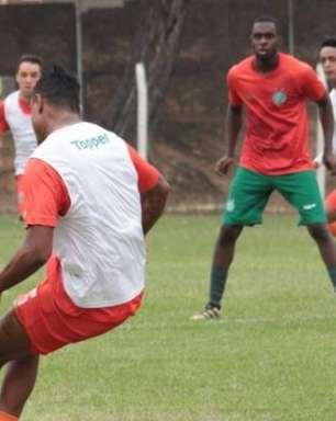 Guarani tem confronto direto com Criciúma para manter embalo na Série B