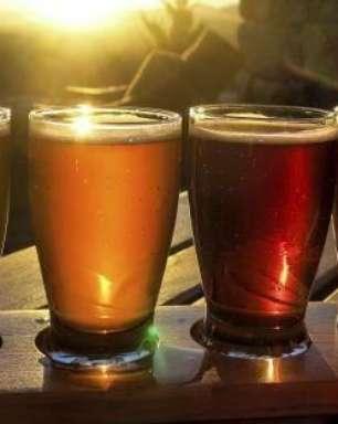 Ale, Lager ou Lambic: conheça os tipos e as famílias das cervejas
