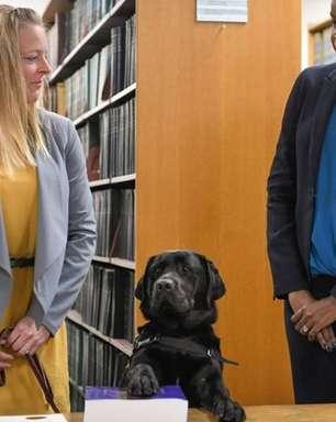Cadela vira funcionária oficial em procuradoria nos EUA