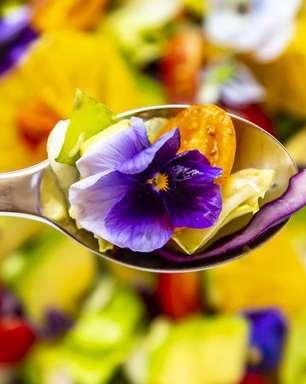 As 10 melhores flores comestíveis para adicionar na sua dieta
