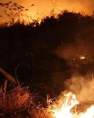 Sob proibições, queimadas batem recorde da última década