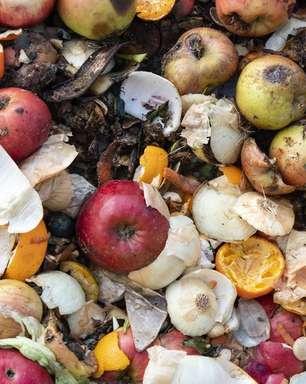 Os efeitos do desperdício chocante de alimentos no mundo