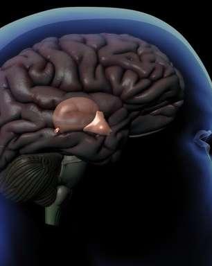 Como funciona a glândula pineal, o órgão enigmático que regula nosso sono