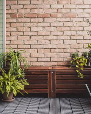 5 plantas que se dão bem em lugares com vento para ter na varanda