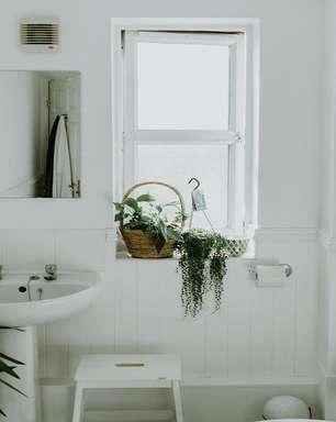 Feng Shui no banheiro: plantas, espelhos e decoração