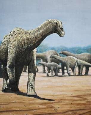 Gênero de dinossauro inédito é descoberto no interior de São Paulo