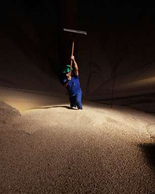 Milho supera R$100/saca e bate recorde com demanda firme e oferta justa, diz Cepea