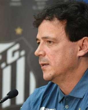 Fernando Diniz acredita que Santos precisa de 'bons e poucos reforços'