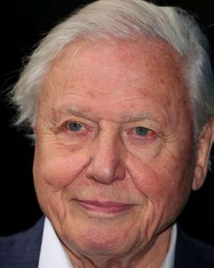 David Attenborough é nomeado representante do povo britânico para cúpula do clima
