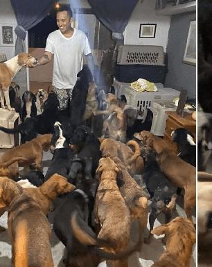 Rapaz abriga 300 cachorros em sua casa durante passagem de furacão
