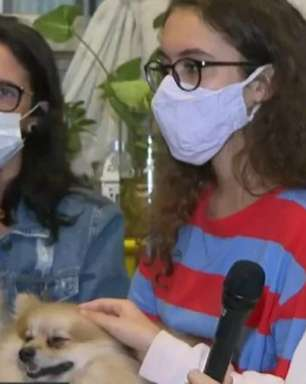 RJ: Cães levados em roubo de carro são recuperados