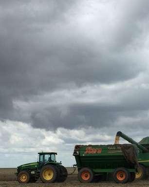 Ministério da Agricultura eleva estimativa de VBP 2021 a recorde de R$1,076 tri