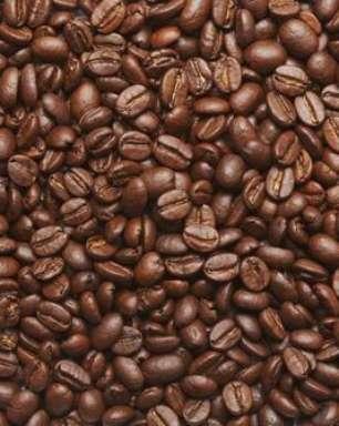 Café, a bebida mais popular do mundo: conheça agora os benefícios da planta