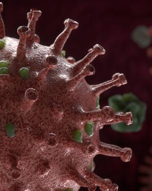Covid-19: por que a variante do coronavírus descoberta na Índia preocupa o Brasil e o mundo?
