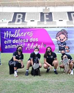 Brasileiro Feminino: Botafogo e São José participam de campanha para incentivar a adoção de animais