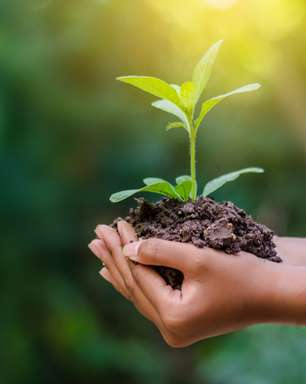 10 mandamentos para ajudar a Terra no dia do Meio Ambiente