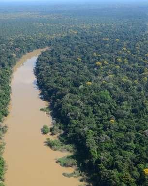 Amazônia: indígenas viveram na floresta por 5 mil anos sem destruir bioma, mostra estudo
