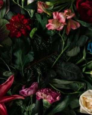Simpatias com flores para atrair o que você deseja