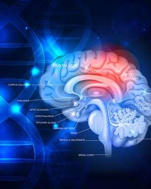 Morte cerebral: entenda o protocolo para definir a morte encefálica