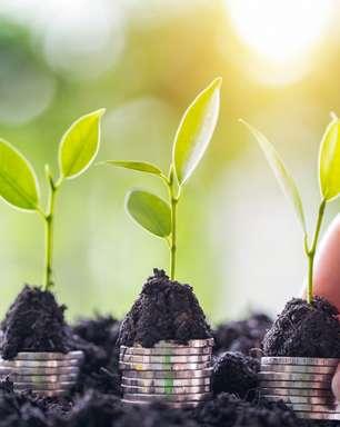 Itaú Unibanco promete R$ 400 bilhões até 2025 para promover economia sustentável