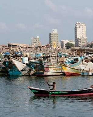 Pescadores do Iêmen encontram tesouro em carcaça de baleia