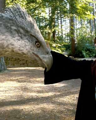 Harry Potter: 3 coisas sobre criaturas mágicas que ninguém entende