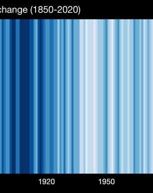 Show Your Stripes - Conheça a campanha