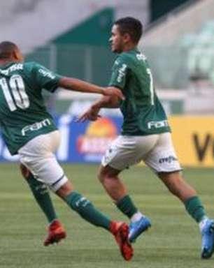 Palmeiras vence Botafogo e mantém invencibilidade no Allianz Parque