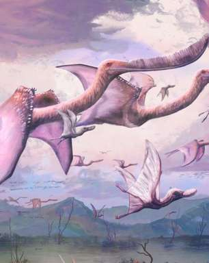 Pterossauros recém-nascidos podem ter sido capazes de voar