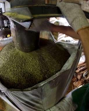Abic pede ação de indústrias de café do Brasil diante de disparada no preço