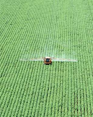 Brasil fecha 1º semestre com alta de 9,4% na área tratada com defensivo agrícola