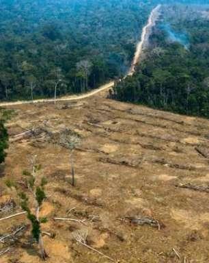 Devastação em 12 meses na Amazônia é a maior desde 2012