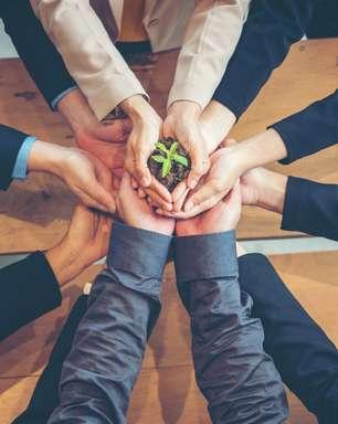 8 recomendações para desenvolver uma carreira em ESG