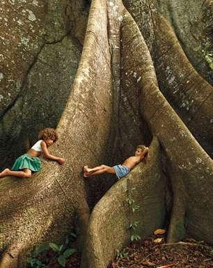Fotógrafo registra há 50 anos a natureza que o Brasil está destruindo