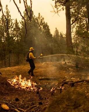 Bombeiros salvam cidade na Califórnia das chamas de incêndio florestal