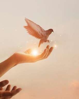 12 passos para desenvolver a inteligência espiritual