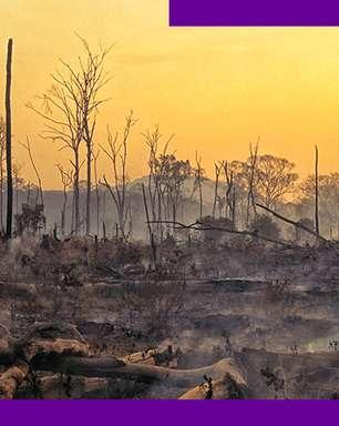 Entenda o impacto da camada de ozônio nas mudanças climáticas
