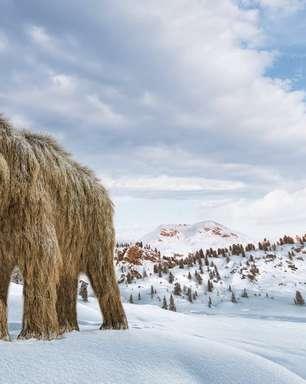 É possível 'ressuscitar' os mamutes para combater as mudanças climáticas?