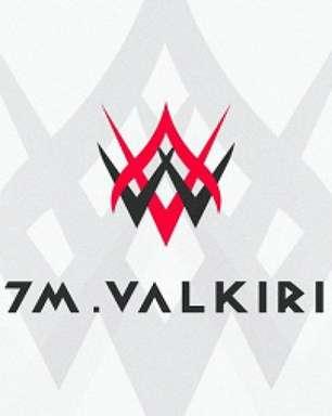 W7M Gaming anuncia parceria com Valkirias
