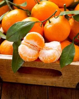Tangerina pode ser combustível para a prática de esportes; conheça os benefícios da fruta